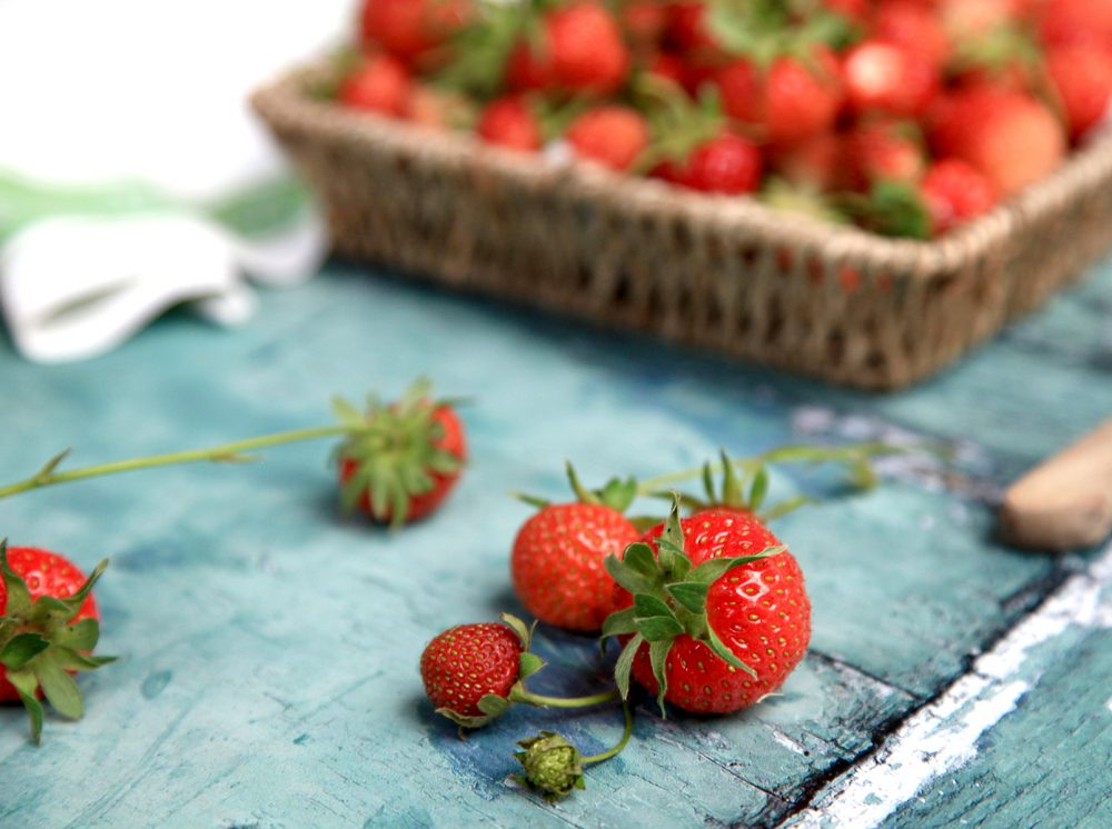 Summer Garden Strawberries Lifestyle Photography by Claudia Riccio Photography Ltd